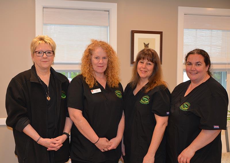 Kingston Animal Hospital Staff